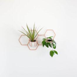 hexal design kwietnik wiszący nuki